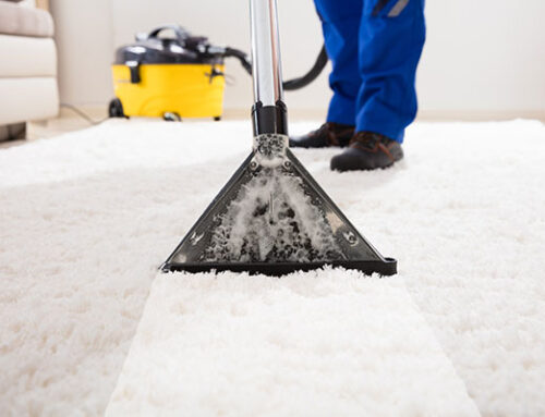 شركة تنظيف في ام القيوين |0545226705 |تنظيف و تعقيم