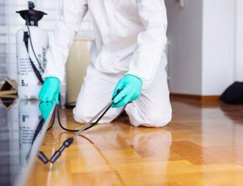 شركة تعقيم منازل في ابوظبي |0545226705| محاربة فيروسات